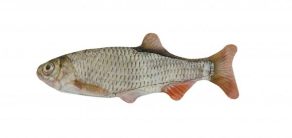 Wild Life Cat Roach (Rotaugenfisch)