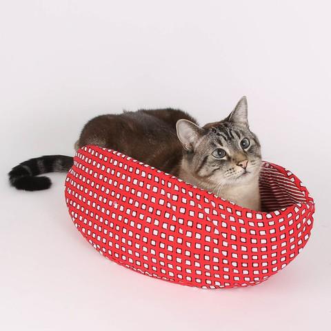 The Cat Canoe