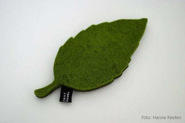 wooly leaf