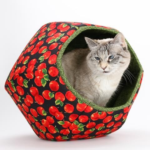 The Cat Ball Apples
