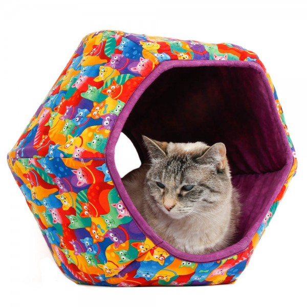 The Cat Ball Rainbow Cats