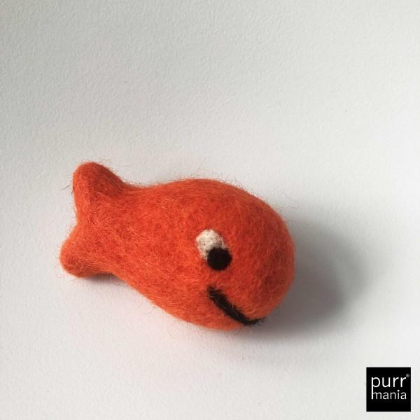 funny fish cora coral
