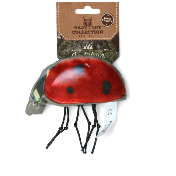 Wild Life Cat Ladybug (Marienkäfer)