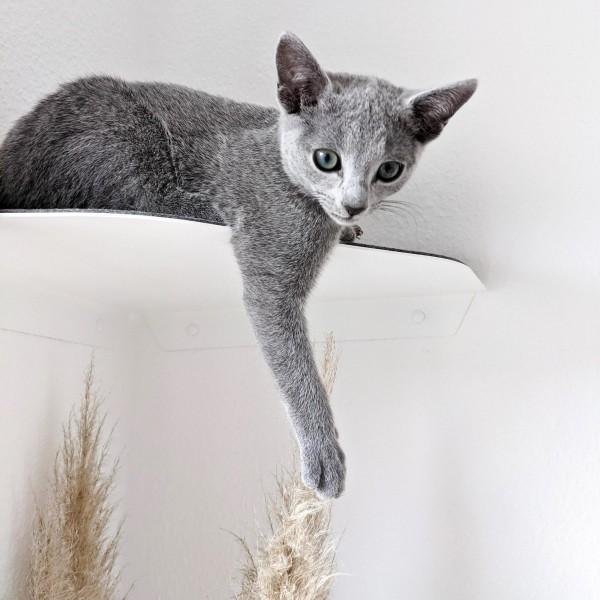 Corner - Katzen-Wandliege für die Ecke - weiß