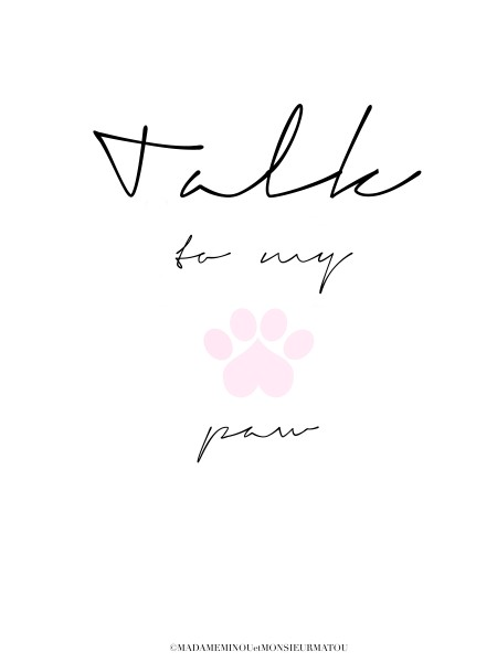 "Poster ""Talk to my paw"""